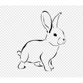 Hamster & Tavşan
